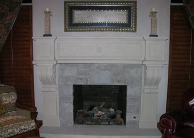Fireplace Surround - Lion
