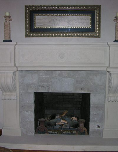 Fireplace Surround - Lion